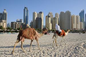 Dubaj miasto kontrastów