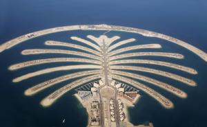 Wyspa w kształcie palmy